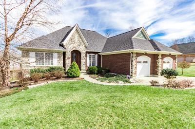 Lawrenceburg, Aurora, Bright, Brookville, West Harrison, Milan, Moores Hill, Sunman, Dillsboro Single Family Home For Sale: 22336 Nevada Court