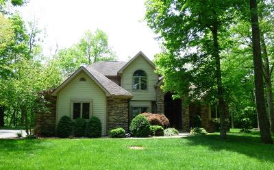 Adams County, Brown County, Clinton County, Highland County Single Family Home For Sale: 286 Todds Ridge Road