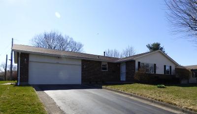 Adams County, Brown County, Clinton County, Highland County Single Family Home For Sale: 734 Hiatt Avenue