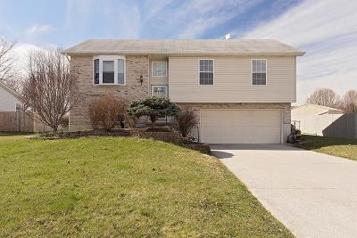 Adams County, Brown County, Clinton County, Highland County Single Family Home For Sale: 104 S Abby Lane