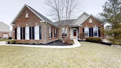 Turtle Creek Twp Single Family Home For Sale: 527 Sage Run Drive