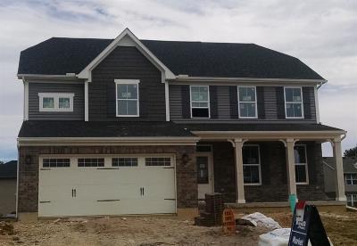 Clermont County Single Family Home For Sale: 4006 Ivywood Drive