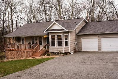 Adams County, Brown County, Clinton County, Highland County Single Family Home For Sale: 10278 Tamme Road