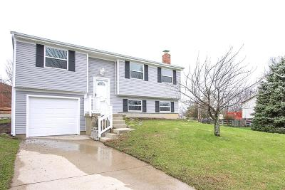 Clermont County Single Family Home For Sale: 4209 Cannon Gate Drive