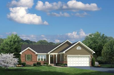 Hamilton County Single Family Home For Sale: 356 Averi Court