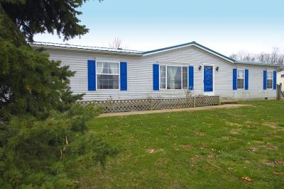 Adams County, Brown County, Clinton County, Highland County Single Family Home For Sale: 1092 Shinkles Ridge Road