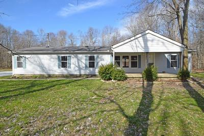 Adams County, Brown County, Clinton County, Highland County Single Family Home For Sale: 10107 Will Allman Road