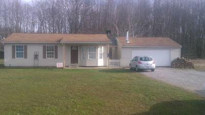 Adams County, Brown County, Clinton County, Highland County Single Family Home For Sale: 7800 Weis Road