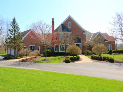 Single Family Home For Sale: 9855 Fox Hollow Lane