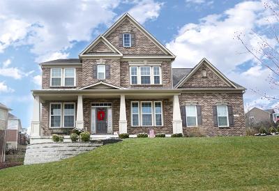 Single Family Home For Sale: 7381 Keltner Drive
