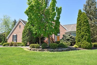Mason Single Family Home For Sale: 4913 Colt Lane