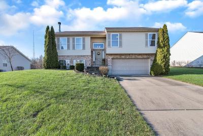 Liberty Twp Single Family Home For Sale: 4938 Long Drive