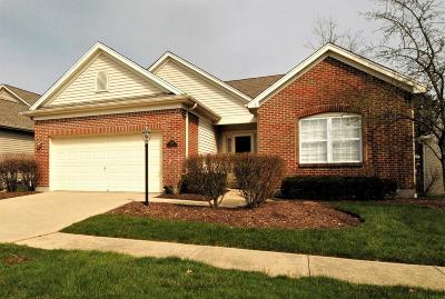 Hamilton Single Family Home For Sale: 7690 Crystal Cove Pointe