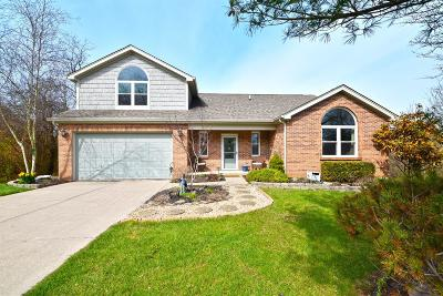 Single Family Home For Sale: 2837 Wooded Vista Court