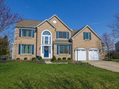 Mason Single Family Home For Sale: 5207 Birchwood Farms Drive