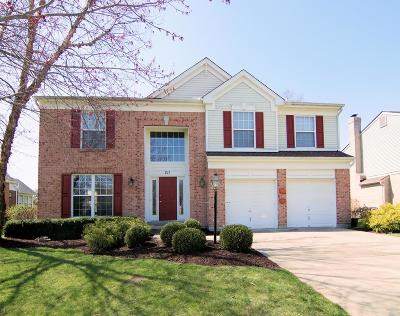 Single Family Home For Sale: 211 Silver Fox Court