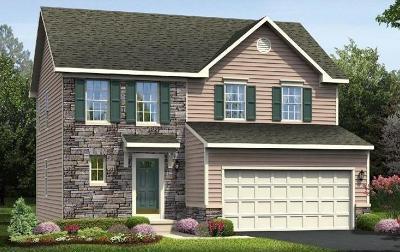 Single Family Home For Sale: 49 Trovillo Drive