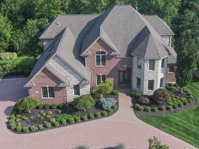 Single Family Home For Sale: 372 Buena Vista Drive
