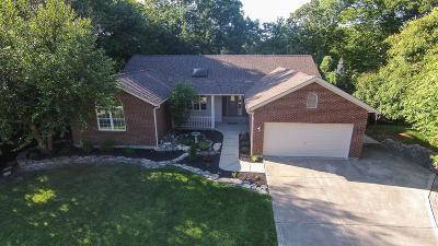 Single Family Home For Sale: 1703 Cottontail Drive
