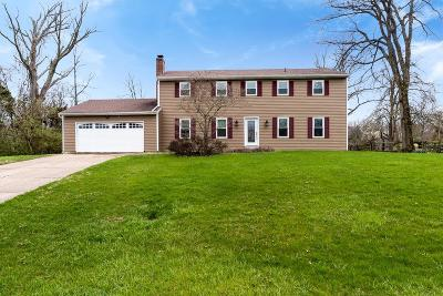 Single Family Home For Sale: 6573 Windfield Court