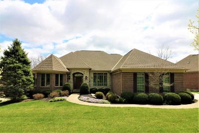 Single Family Home For Sale: 101 Chateau Valley Lane