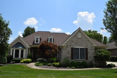 Single Family Home For Sale: 157 Chateau Valley Lane