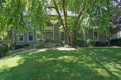 Single Family Home For Sale: 8996 Terwilligers View Court