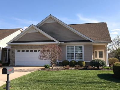Hamilton Twp Single Family Home For Sale: 1189 Meadow Vista Drive