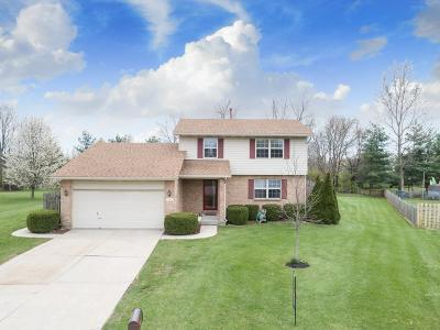 Liberty Twp Single Family Home For Sale: 6187 Shawna Court