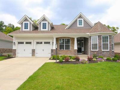 Single Family Home For Sale: 11744 Hickory Run Court