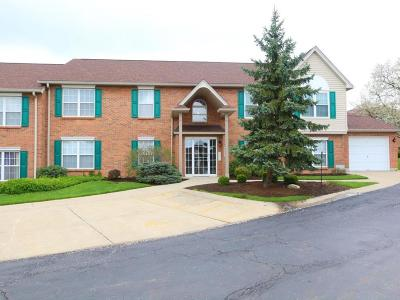 Colerain Twp Condo/Townhouse For Sale: 8773 Carrousel Park Circle #155