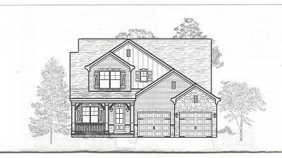 Single Family Home For Sale: 7397 Southside Avenue