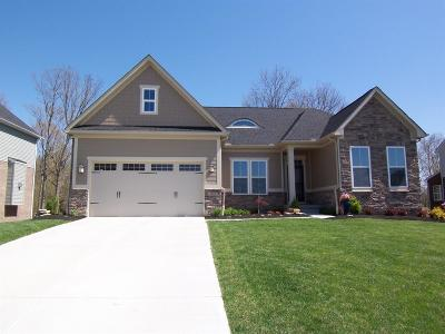 Crosby Twp Single Family Home For Sale: 7012 Fort Scott Boulevard