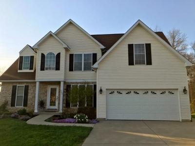Hillsboro Single Family Home For Sale: 136 Vaughn Avenue