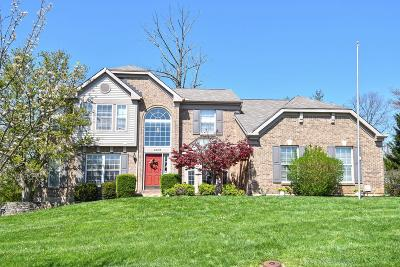 Clermont County Single Family Home For Sale: 4201 Brandonmore Drive