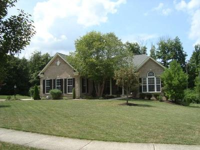 Liberty Twp Single Family Home For Sale: 7075 Airy View Drive