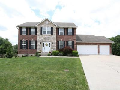 Liberty Twp Single Family Home For Sale: 7171 Darcie Drive