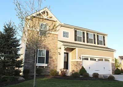 Single Family Home For Sale: 4866 Parkside Drive
