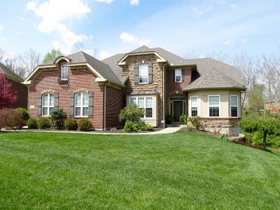 Clermont County Single Family Home For Sale: 154 Colonial Drive