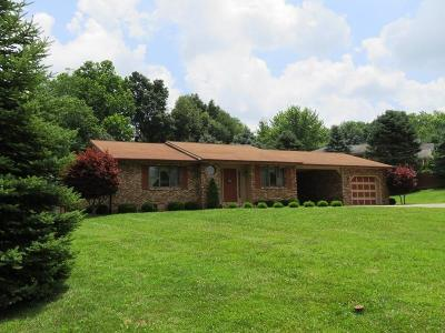 Highland County Single Family Home For Sale: 1198 Holland Circle
