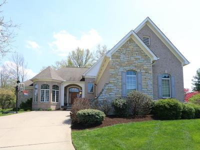 Blue Ash Single Family Home For Sale: 10238 Ryans Way