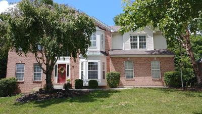 Liberty Twp Single Family Home For Sale: 6486 Hughes Ridge Lane