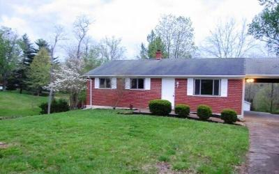 Harrison Twp Single Family Home For Sale: 11088 Flora Road