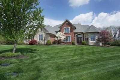 Turtle Creek Twp Single Family Home For Sale: 598 Dorothy Drive