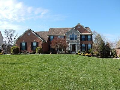 Clermont County Single Family Home For Sale: 6585 Trailwoods Drive