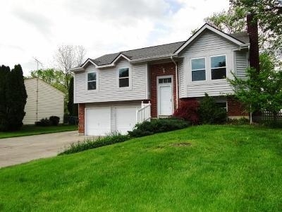 Warren County Single Family Home For Sale: 1274 Kay Drive