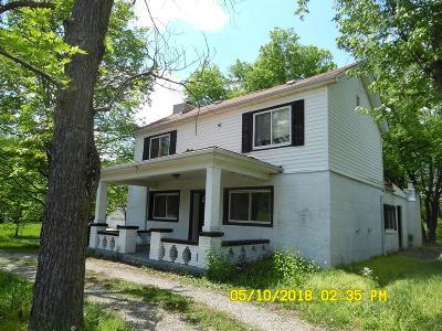 West Chester Single Family Home For Sale: 7331 Cincinnati Dayton Road