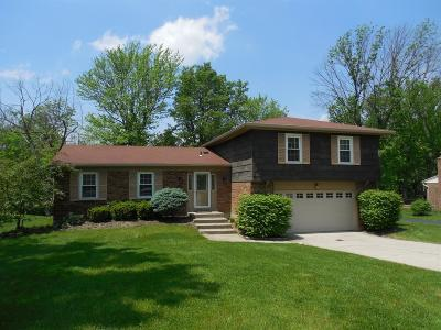 Delhi Twp Single Family Home For Sale: 6439 Timberhill Court