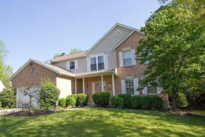 Blue Ash Single Family Home For Sale: 4990 Old Pfeiffer Lane