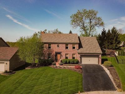 Single Family Home For Sale: 7205 Camargo Greene Court